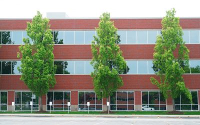 6 Reasons Why Curb Appeal is Important for Commercial Real Estate